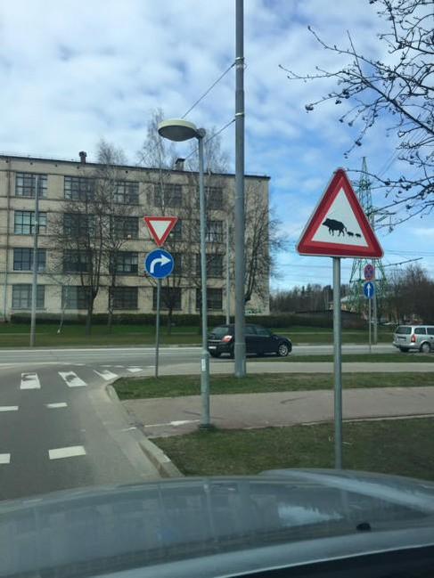Foto: Rīgas Domes Satiksmes departaments