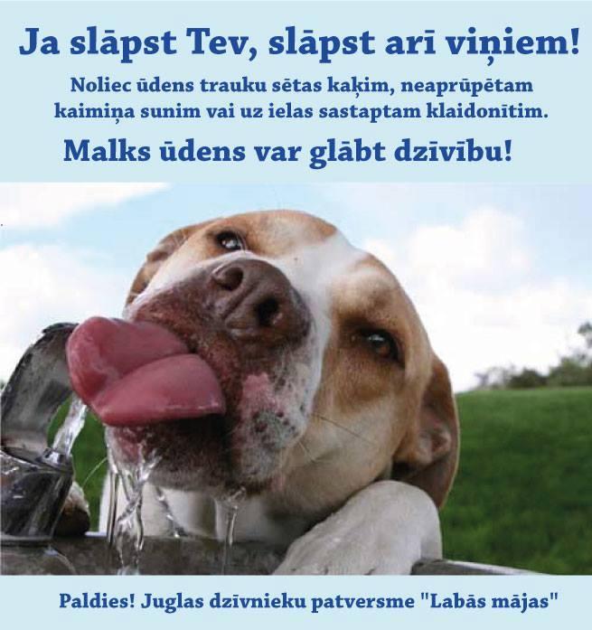 Foto avots: facebook.com/patversme