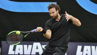 Gulbis turpina krist ATP rangā
