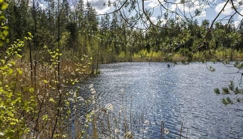 No ezeriem Ogres un Riebiņu novados izcelti divi bojāgājušie