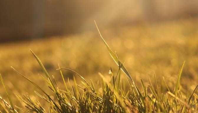 Gaidāma sausa, rudenīga diena