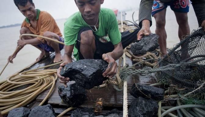 Birmā ūdenslīdēji zvejo ogles