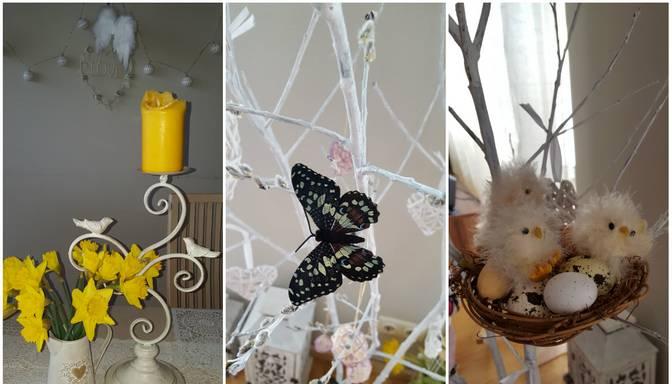 Dzeltenas narcises un raibs taurenis. Smelies idejas Lieldienu dekoriem no Ivetas Simsones!