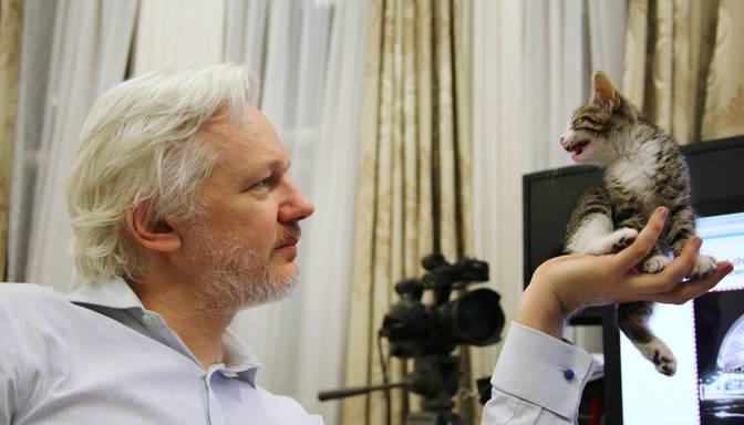 Skandalozā WikiLeaks dibinātāja Asanža kaķēnam – savs Twitter konts