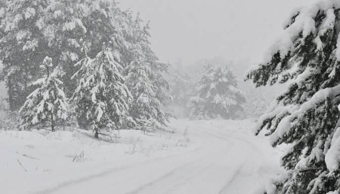 Nākamās nedēļas pirmajā pusē vietām valstī gaidāma ļoti stipra snigšana