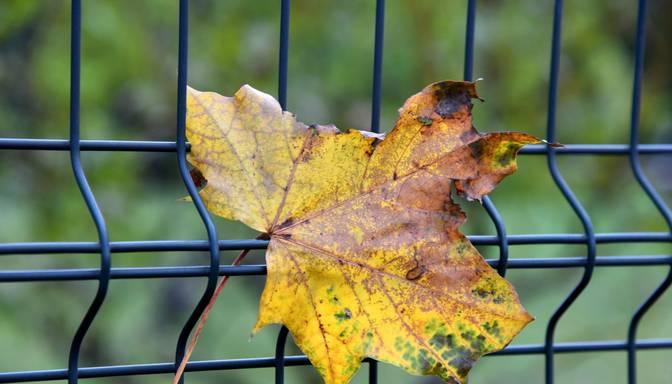 Kāds laiks gaidāms oktobrī? Uzzini sinoptiķu prognozi