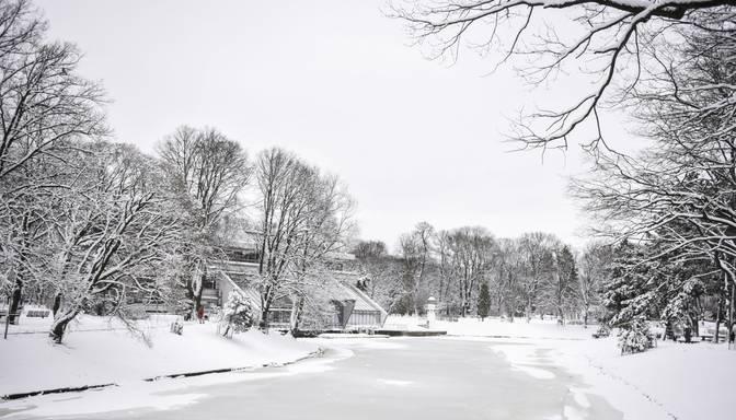 Nedēļas izskaņā gaidāms vēsāks laiks un sniegs
