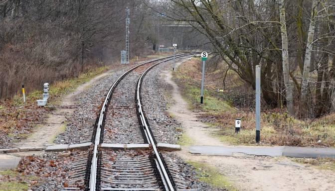 Dobeles novadā vilciens notriecis trīs teļus