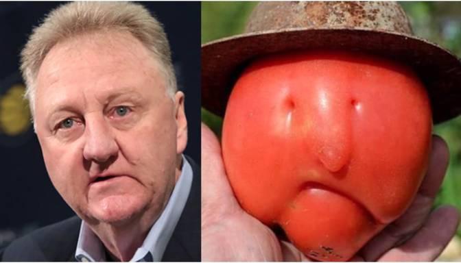 Kad tavs dubultnieks ir auglis – internetā par hitu kļuvis tomāts, kas izskatās pēc NBA leģendas Lerija Bērda