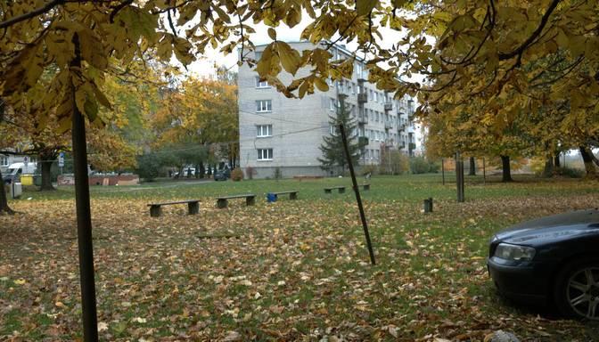 Vīrietis reibumā sētniecei Jelgavā nozog lapu pūtēju; likumsargi garnadzi notver