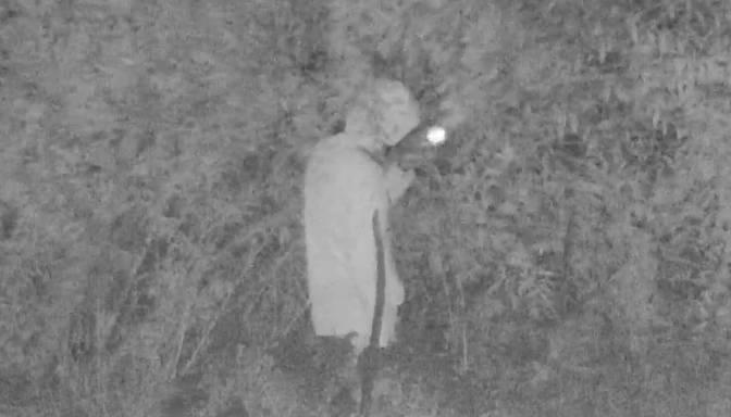 Kameras fiksē zālītes pīpētāju krūmos Salaspilī; viņa mēģinājums mukt nesekmējas