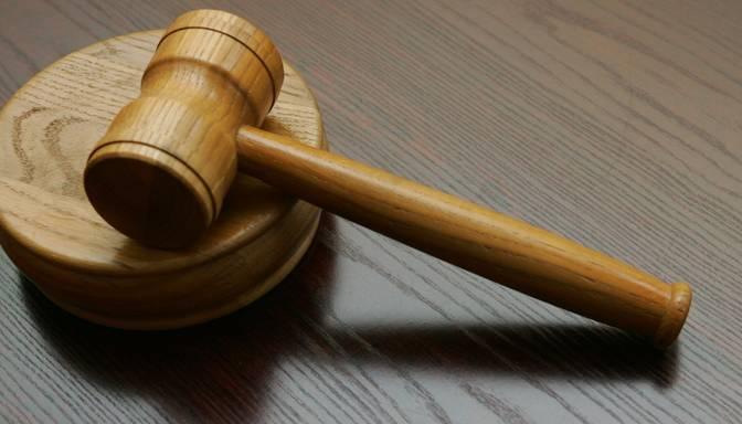 Strupišs rosina Tieslietu padomē apspriest Bordāna viedokli par spriedumu Magoņa lietā