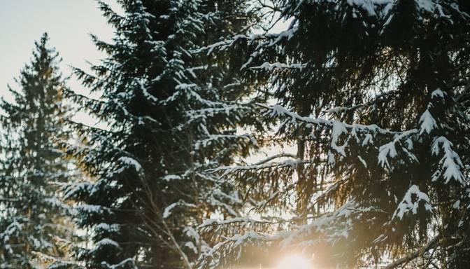 No valsts rietumiem gaidāms sniegs