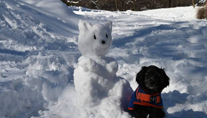Saule mīsies ar mākoņiem, vietām snigs