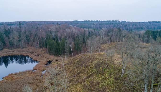 Aizvadītajos pāris gados Latvijā ir atklāti pārsteidzoši daudz jaunu pilskalnu
