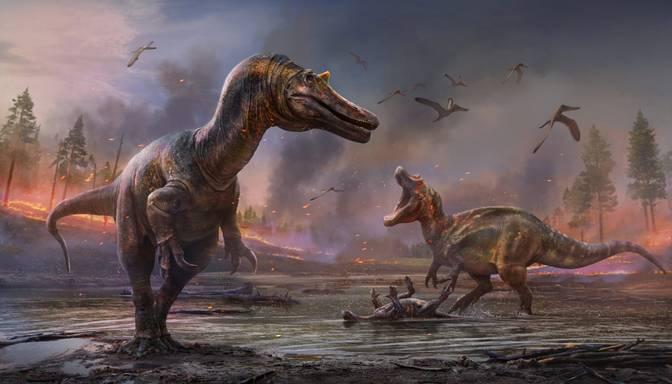 Anglijas salas krastā atrasti līdz šim nezināmas izcelsmes dinozauru sugas kauli