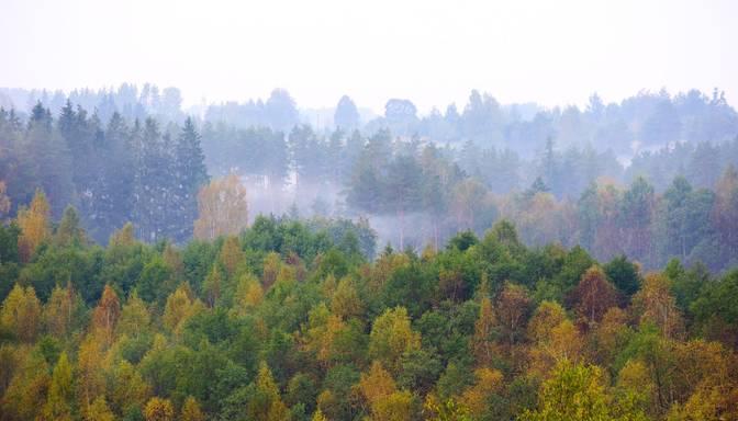 Meteorologi: Septembris šogad Latvijā bijis vēsākais kopš 2008. gada