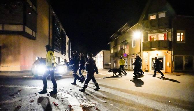 Norvēģijā ar šaujamloku bruņotais nogalinājis piecus cilvēkus un divus ievainojis